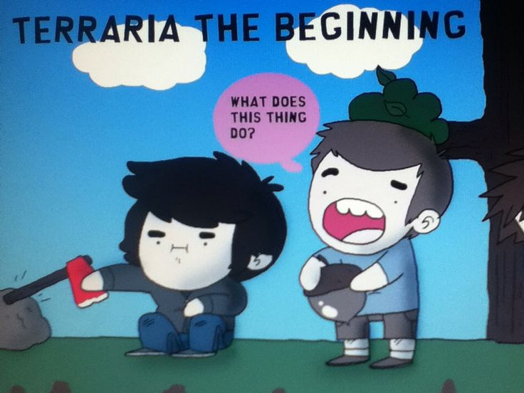 I found this very funny! XD  You Should too if u play terraria.