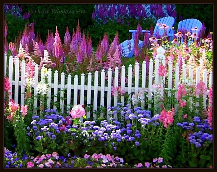 What a gorgeous garden