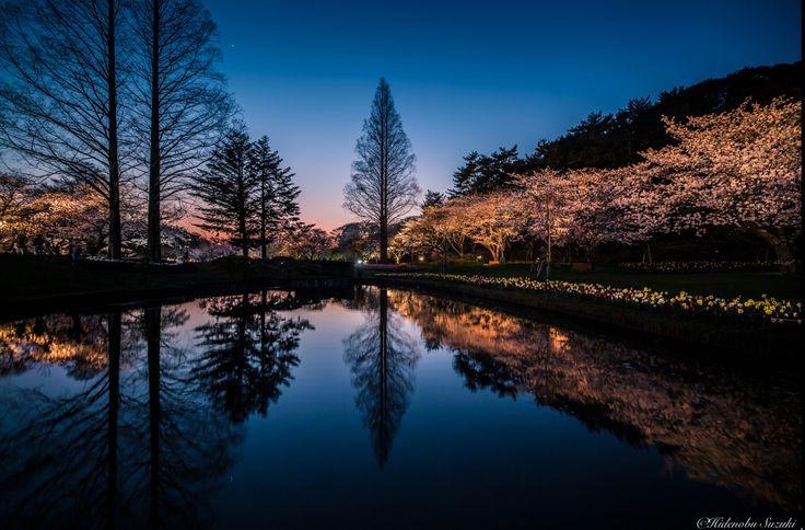 Hidenobu Suzuki y la idílica tranquilidad de Japón