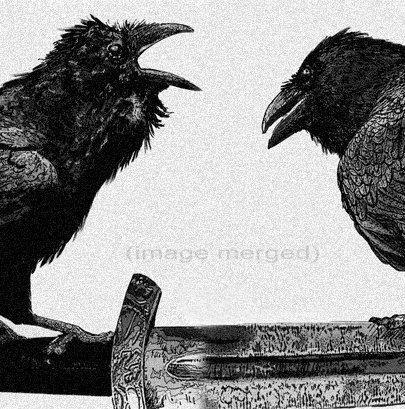 Raven Odin artwork  Raven crow Huginn and Muninn par RAVENSTAMPS