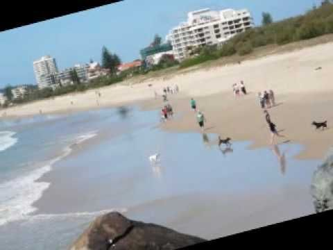 A slideshow of the Gold Coast, Palm Beach 'beach walk ' through digital photos..Palm Beach is an interesting beach suburb, nestled between two creeks Currumbin and Tallebudgera. The location lends itself to some spectacular scenery not featured in other areas of the Gold Coast. Walking the length of Palm Beach should take you approximately 40mins depending how many times you stop to pick up shells or take in the view.http://www.palmbeachdirectory.com.au