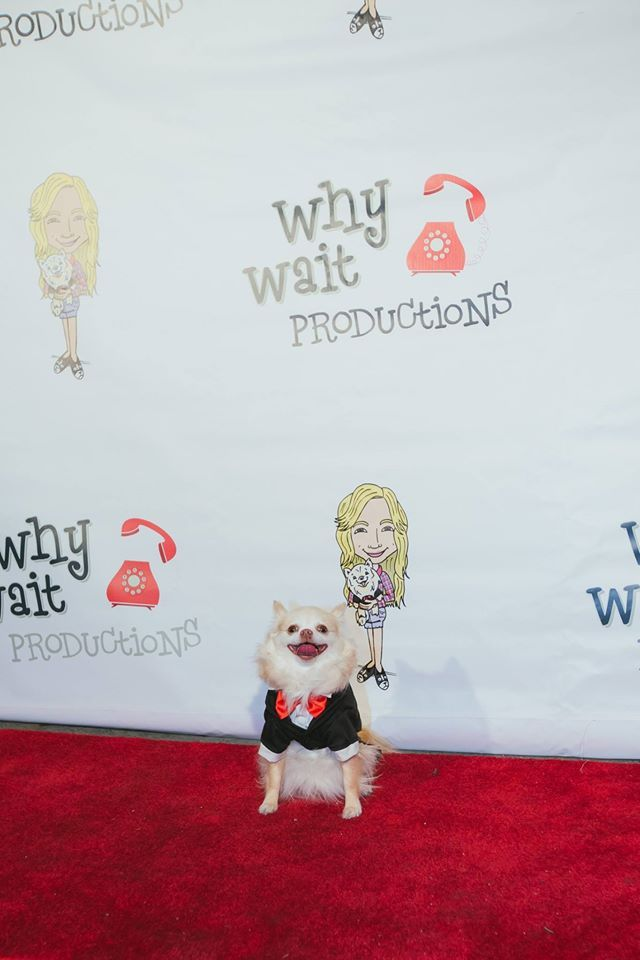 Why Wait Productions Movie Premiere