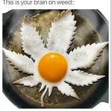 Image result for stoners in the morning