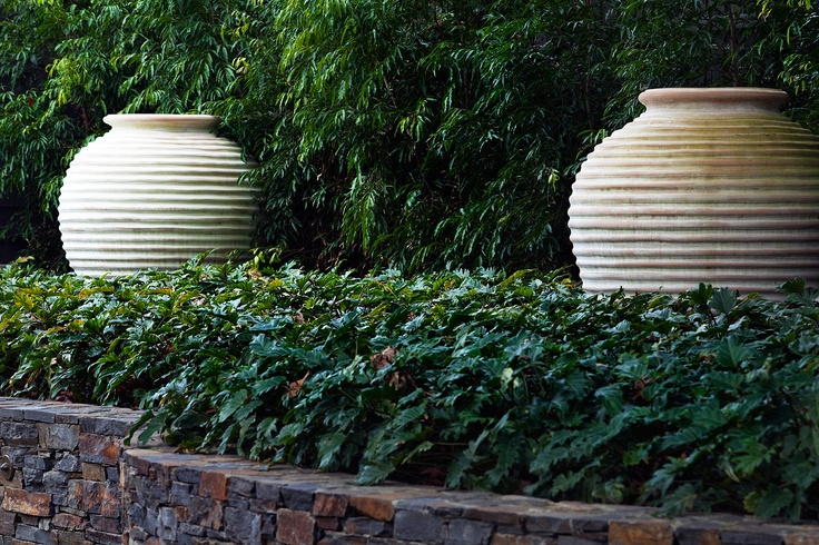 Custom large scale ribbed ceramic pots surrounded by Philodendron 'Xanadu'  Armadale, Victoria Australia  Anthony Wyer + Associates  http://www.anthonywyer.com