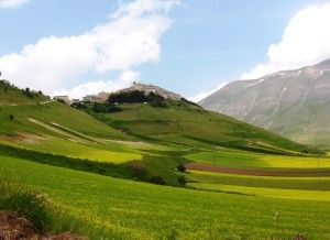 Castelluccio di Norcia, la Fioritura