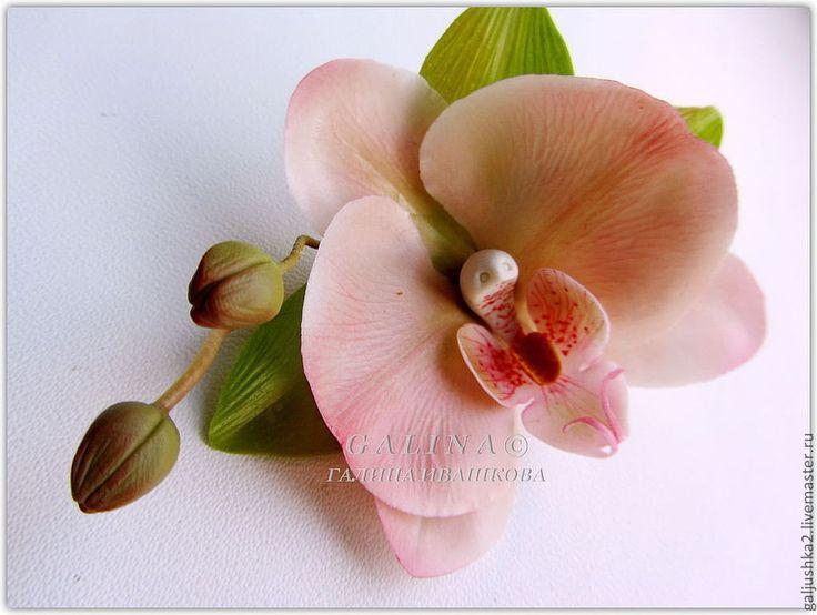 Купить Брошь - заколка Орхидея кремовая. Холодный фарфор. - кремовый, цветы из полимерной глины