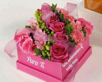 flores imagenes hermosas para dedicar