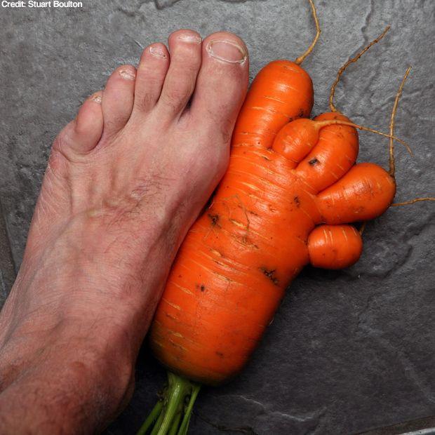 wortel voet