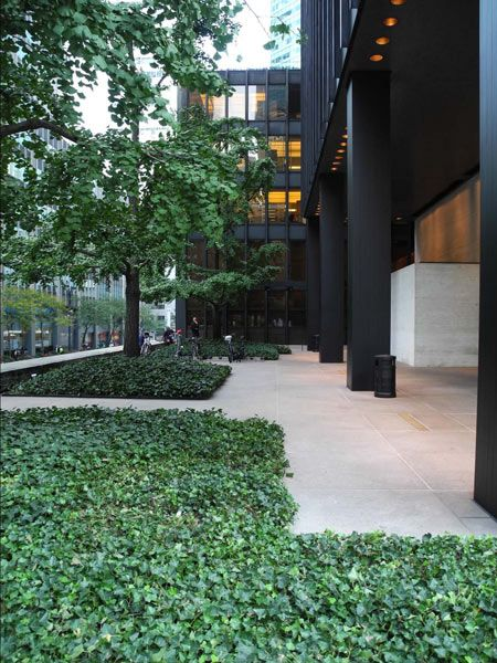 Seagram Building and Plaza, New York, NY | Completed in ...