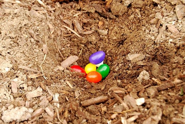 I love this idea for magic jelly beans. Plant jelly beans the night before Easter and the next morning they go out to find a giant rainbow colored lollipop!