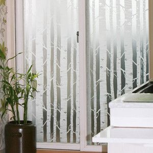 White Birch TREE Forest Frosting Frosted Window Film 24H Privacy Glass 1m /m | eBay