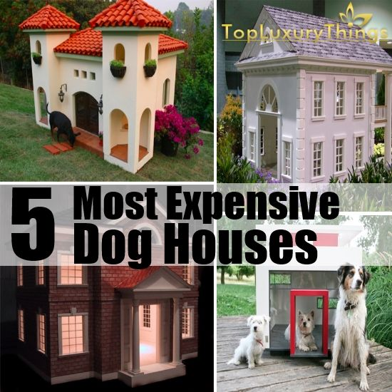 5 Most Expensive Dog Houses In The World
