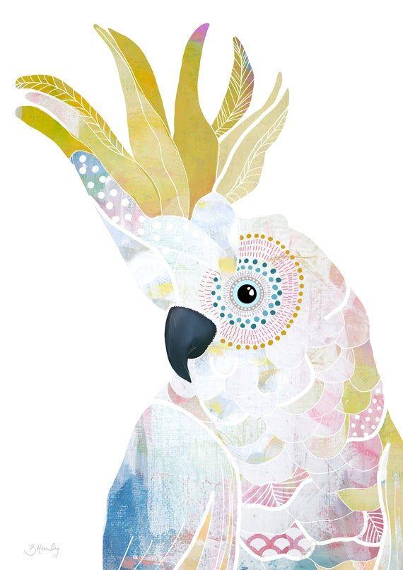 John Gould Native  Birds print black cockatoo art painting Vintage A3 Australia