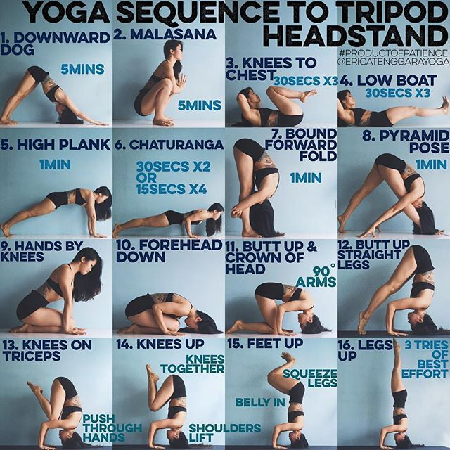 YOGA SEQUENCE TO TRIPOD HEADSTAND: Warm up: Sun A & B x3 each 1. DOWNWARD DOG This will warm up your shoulders good & train your body to hold on no matter what 2. MALASANA To warm up your hips & lower