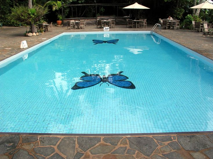how to add salt to intex saltwater pool