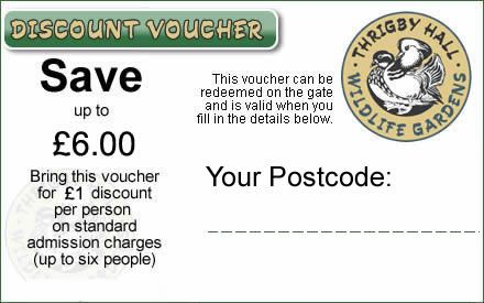 Discount Voucher for Thrigby Hall Wildlife Gardens nr great yarmouth