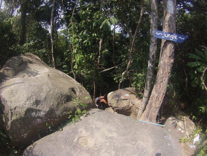 Koh rong - jungle