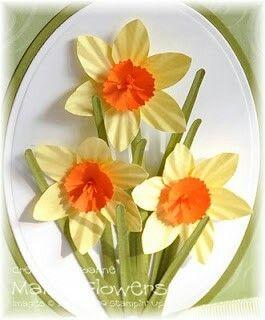 Daffodil tutorial
