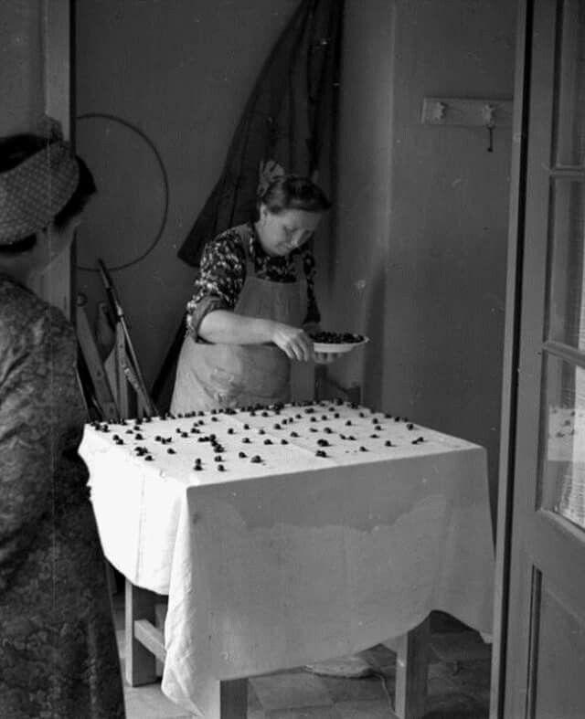 Készül a rétes 1942-ben  (fotó Lissák Tivadar, Fortepan)