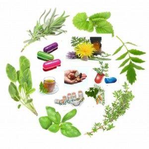 CONPRAFIP - 1º Congresso Nacional Online sobre Práticas em Fitoterapia e Plantas Medicinais