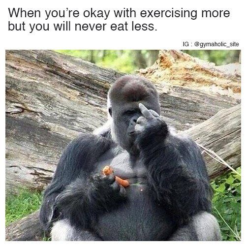 When You're Okay With Exercising More https://www.musclesaurus.com