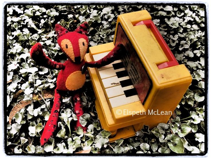 Maestro Little Prairie Fox! #fox #piano