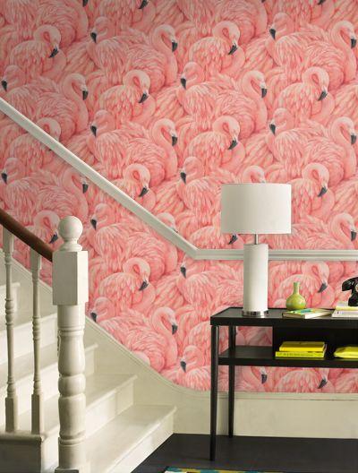 Flamingo 2 Bedroom Suite: Best 25+ Peach Bathroom Ideas On Pinterest