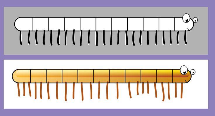 Graphisme Maternelle Petite Section sur les lignes verticales : Dessiner les pattes du mille-pattes dans un espace limité, puis dans un espace ouvert.