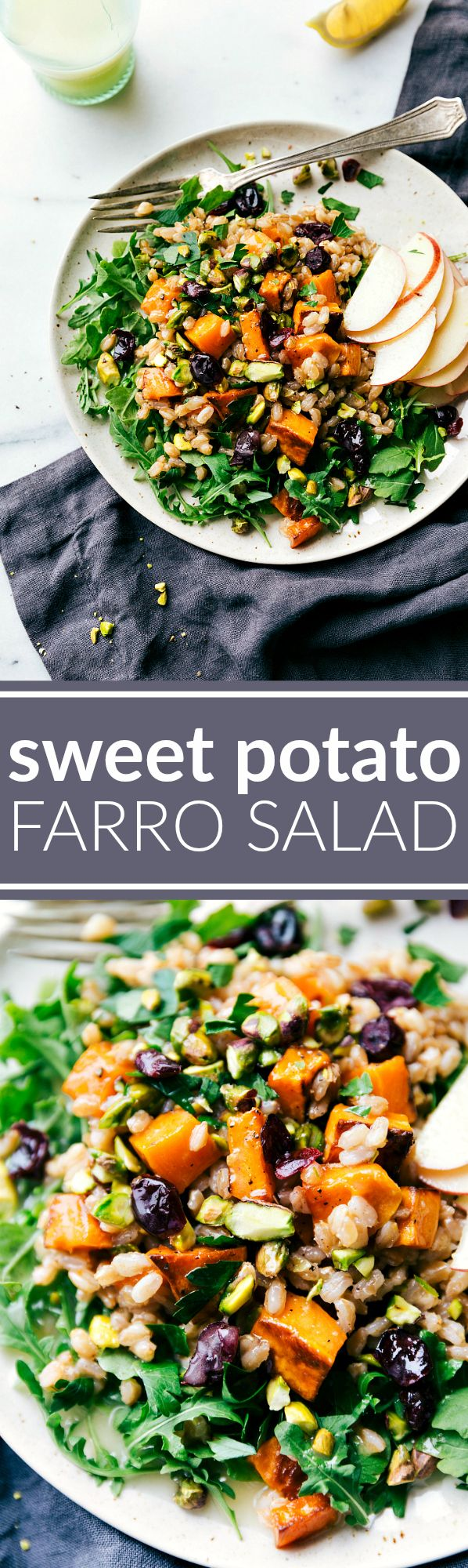 ROASTED SWEET POTATO SALAD. A hearty, healthy, and filling salad -- sweet apple cider farro, roasted sweet potatoes, arugula, and an easy blender lemon dressing. chelseasmessyapron.com #AlessiFoods #ad