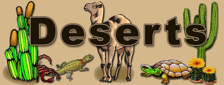 Desert site for kids.  Great animal and plant pictures with facts.