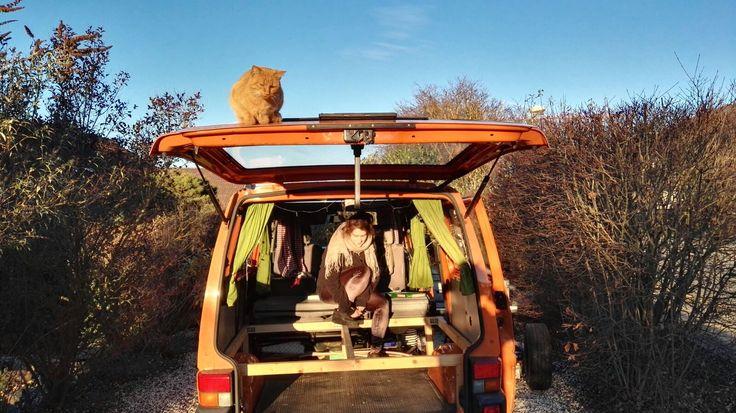 Campervan conversion  using wintertime