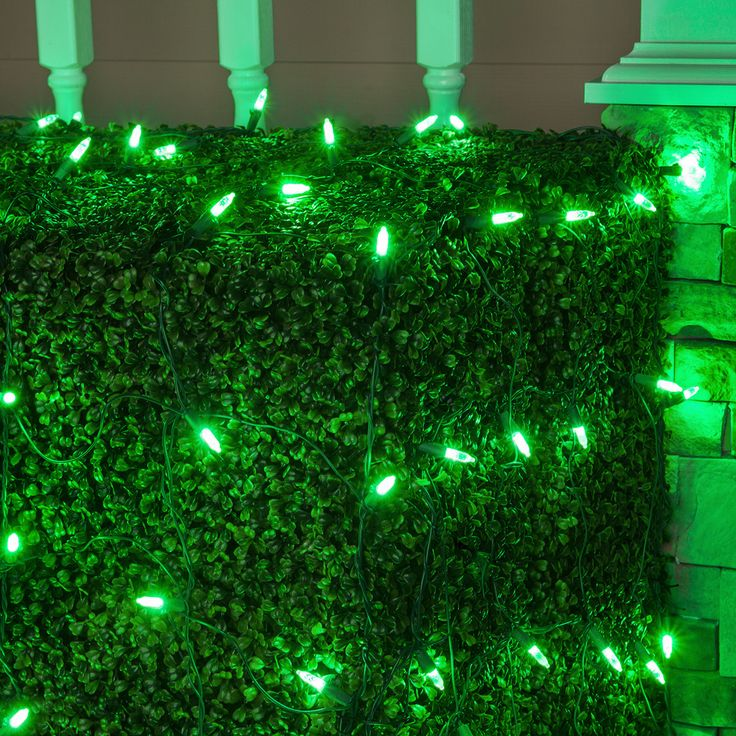 How To String Xmas Lights On Bushes : 17 Best images about Green Lights on Pinterest Green led, C9 led christmas lights and String ...