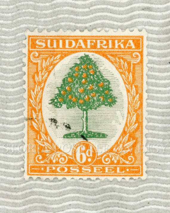South Africa Orange Tree Vintage Postal Stamp Poster 16x20 Instant Download .JPG (042) via Etsy