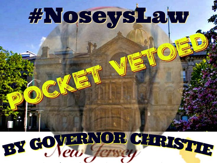 "Governor Christie of New Jersey Has Pocket Vetoed #NoseysLaw!  However, a new bill has already been prepared and is ready to go, which hopefully Governor Murphy will sign in the near future!  Senator Raymond J. Lesniak says ""We'll make Nosey's Law a model for every state to follow!"""