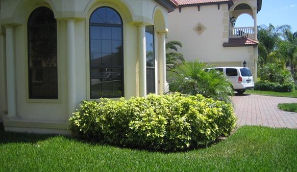 Landscaping Ideas Central Florida Landscape Design