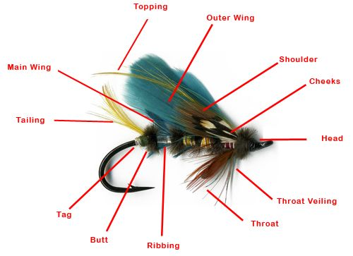 anatomy of a fishing fly 2