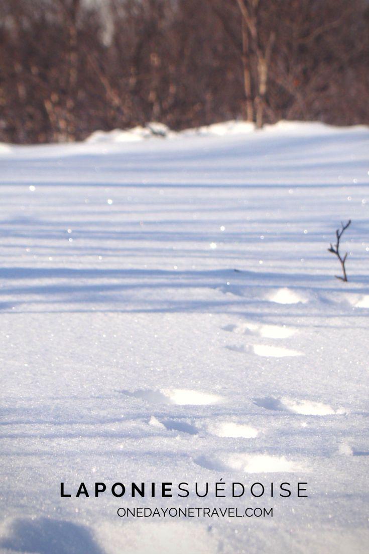 Empreintes dans la neige - Parc National d'Abisko en #Laponie suédoise.