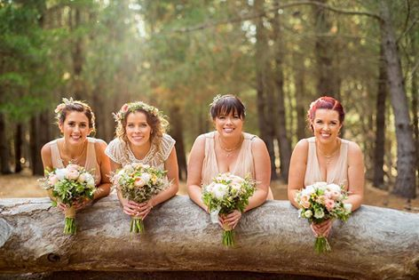 Gorgeous photo captured by Photography by David of Stacey and her stunning bridesmaids.