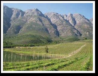 Omgeving Stellenbosch - Swellendam - Oudtshoorn