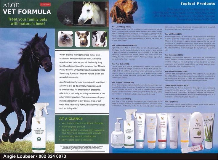 Aloe Vera and animals