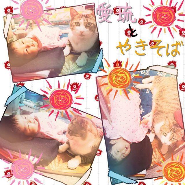 何だかんだ生まれる前から 気にしてそばに居った( ´・ω・`)❤ まだ、やきそばのがデカいかなw 今でも気にして面倒見てくれる(笑) 泣いたらよってくるし 寝とったら側で寝るし。 スグ越されるんやろーな( ´・ω・`) #愛猫#やきそば#デカい#めぐちん#ねこ部 #娘 #愛娘#女の子 #ベビー #赤ちゃん #生後1ヶ月#11月うまれ #11月2日生まれ  #かわいい#ママリ#おやばか部 #猫 #ママ友募集中 #もうすぐ#クリスマス  #ふくおか #20歳#ママ #新米パパママ