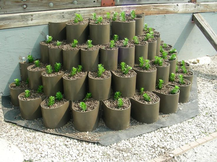 Lightweight Plantable Retaining Wall Blocks Garden