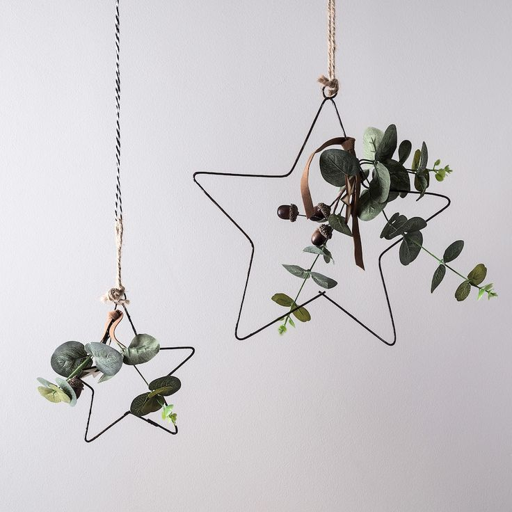 Eucalyptus Hanging Star Christmas Decoration Duo | Ligh