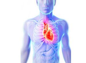 Bra guide: Hur högt över vilopuls bör hjärtfrekvensen vara vid träning? --> http://wolber.se/hur-vilopuls-hjartfrekvensen-traning/