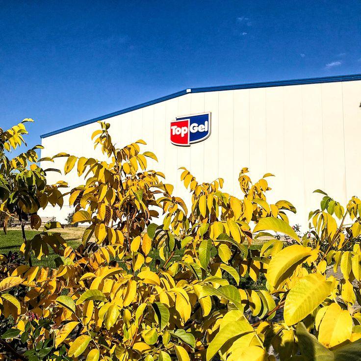 TopGel location - TopGel factory