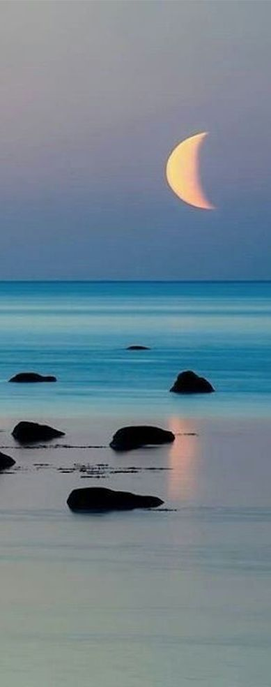 Pic of the Day...Here Comes The Moon ------------ #beach #moon #beautiful #tropics #travel #beaches