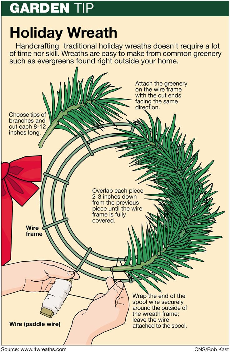 Amp occasions gt christmas alert occasions gt christmas decorations - Proper Pruning Method Needed For Making Evergreen Wreaths By Jeff Rugg On A Syndicate Of Talent Diy Pine Wreath More For Xmas