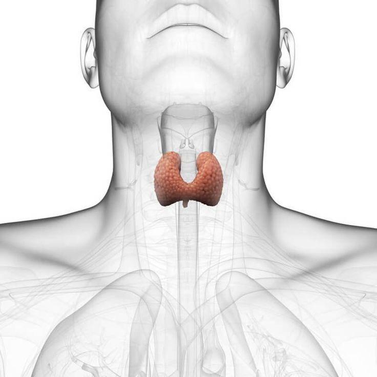 Заболевания щитовидной железы