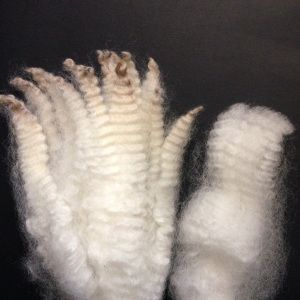 Hydrogen peroxide to clean fleece