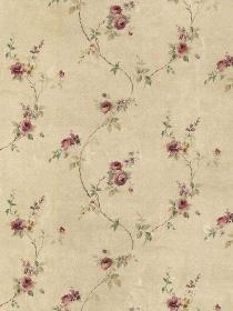 Book #: 1574, Steve's Wallpaper